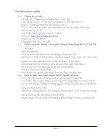 Môn quản trị chiến lược: Phân tích chiến lược Tổng công ty cổ phần May Việt Tiến