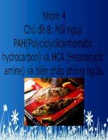 Mối nguy PAH(Polyciclyclicarmomatic hydrocarbon) và HCA (Heterocyclic amine) và biện pháp phòng ngừa