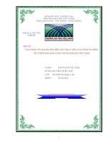 CÁC NHÂN tố ẢNH HƯỞNG đến cấu TRÚC vốn của CÔNG TY NIÊM yết TRÊN sàn GIAO DỊCH CHỨNG KHOÁN VIỆT NAM