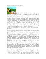 Bài học từ cuộc đua Thỏ và Rùa