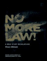 No More Law  A bold study in Galatians