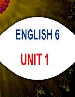 Giáo án bồi dưỡng tham khảo tiếng anh 6 Unit 1 Greetings  (28)