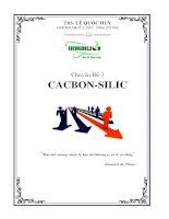 Bài tập trắc nghiệm chuyên đề Cacbon silic