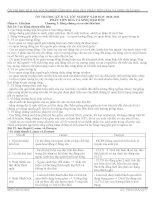 Bài giảng ôn thi TN tiến hóa và sinh thái chuẩn tháng 4-2011