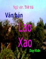Tiet 116 Lao xao