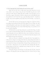 MỘT SỐ KINH NGHIỆM TRONG CÔNG TÁC GIÁO DỤC TRUYỀN THỐNG YÊU NƯỚC CHO HỌC SINH THÔNG QUA MÔN GIÁO DỤC CÔNG DÂN 10