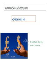 Bài tập nhóm chuyên đề tự chọn về đề tài Hợp Đồng hoán đổi