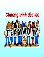 Bài giảng Kỹ năng làm việc đồng đội - Tâm Việt Group