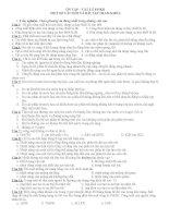 CÂU HỎI ÔN TẬP VẬT LÝ 8 HỌC KÌ II
