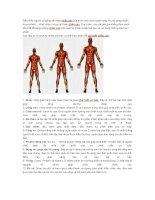 10 phương pháp tăng chiều cao