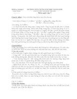 Đề thi + Đáp án HSG 6,7,8 (10-11) văn 7
