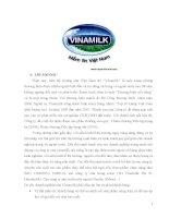 PHÂN TÍCH CHIẾN LƯỢC MARKETING MIX CỦA CÔNG TY CỔ PHẦN VINAMILK