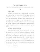 Làm thế nào để dạy tiết READING COMPREHENSION có hiệu quả TIẾNG ANH LỚP 6.DOC