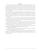 Phân loại và phương pháp giải bài tập phần Điện trường − lớp 11 THPT