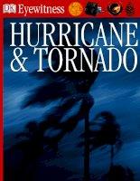 Hurricane and Tornado Eyewitness