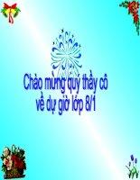 THUYẾT MINH VỀ DANH LAM THANG CANH CO TRO CHOI