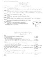 Đề và đáp án Ktra 1 tiết vật lý 7HK2(10-11)
