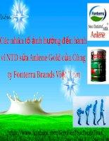 slide thuyết trình các nhân tố ảnh hưởng đến hành vi NTD sữa anlene gold của công ty fonterra brands việt nam