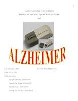 Tiểu luận môn giải phẫu sinh lý và hoạt động thần kinh cao cấp bệnh Alzheimer