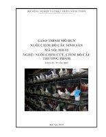 giáo trình mô đun  nuôi chim cút sinh sản nghề nuôi chim cút chim bồ câu thương phẩm