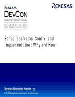 Sensorless Vector Control and Implementatio - Why and How (1)