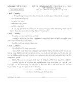 Đề thi học sinh giỏi tỉnh vĩnh phúc môn Ngữ Văn 9 năm học 2014 - 2015(có đáp án)