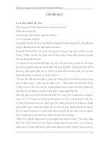 luận văn quản trị nhân lực ''KHẢO SÁT CÔNG TÁC ĐÀO TẠO VÀ PHÁT TRIỂN NGUỒN NHÂN LỰC TẠI CHI NHÁNH CÔNG TY CỔ PHẦN ELEAD