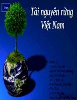 Thuyết trình Tài nguyên rừng Việt Nam