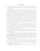 """Tiểu luận quản lý nhà nước: """"Nâng cao chất lượng giải quyết khiếu nại, tố cáo trên địa bàn huyện Nam Đàn""""."""