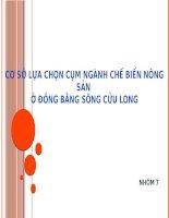 Thảo luận môn Quản lý phát triển kinh tế: Cơ sở lựa chọn cụm ngành chế biến nông sản ở đồng bằng sông Cửu Long