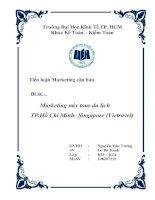 tiểu luận quản trị marketing Marketing mix tour du lịch TP.Hồ Chí Minh- Singapore (Vietravel)