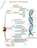 Sơ đồ tư duy lý thuyết sinh học hocmai vn forum