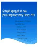 Lý thuyết Ngang giá sức mua (PPP) Mối quan hệ giữa lạm phát và tỷ giá hối đoái