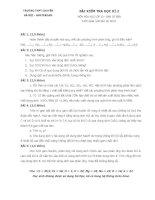 ĐỀ ĐÁP ÁN THI HỌC KÌ 2 LỚP 11 TRƯỜNG HÀ NỘI - AMSTERDAM