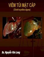 Chẩn đoán hình ảnh viêm túi mật cấp