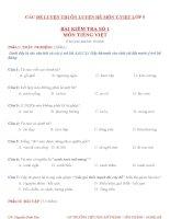 20 đề ôn LUYỆN TIẾNG VIỆT lớp 5