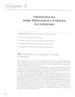 CHAPTER 03  individual  organizational learning