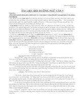 Tài liệu bồi dưỡng HSG môn Ngữ văn 9