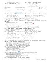 Đề thi HKII Tin Học 10 Đề số 7