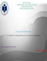 Tổng quan về sử dụng chất chống oxy hóa trong dầu mỡ và sản phẩm dầu mỡ