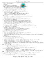 ĐỀ CƯƠNG VẬT LÝ 11 CƠ BẢN (HKII)