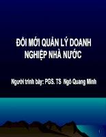 Đổi mới Quản lý Doanh nghiệp Nhà nước - Ngô Quang Minh