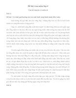 50 bài văn mẫu lớp 6 hay