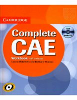 Complete CAE workbook with answers