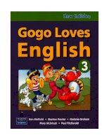Gogo Loves English 3