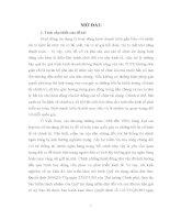 Quyền và nghĩa vụ của các chủ thể trong hoạt động bảo hiểm tiền gửi theo pháp luật Việt Nam