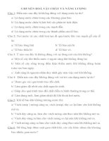 620 CÂU TRẮC NGHIỆM SINH HỌC LỚP 11-CÓ ĐÁP ÁN