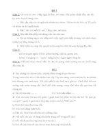 15 đề ôn thi học sinh giỏi môn tiếng việt lớp 3