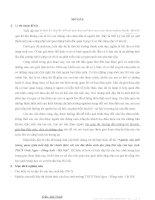 Khóa luận tốt nghiệp Nghiên cứu mối tương quan giữa tuổi dạy thì chính thức với các đặc điểm sinh dục phụ thứ cấp của học sinh THCS Vĩnh Ngọc - Đông Anh - Hà Nội