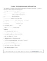 Present perfect continuous tense exercise
